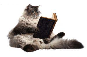 Om katter och litteratur Becats.se